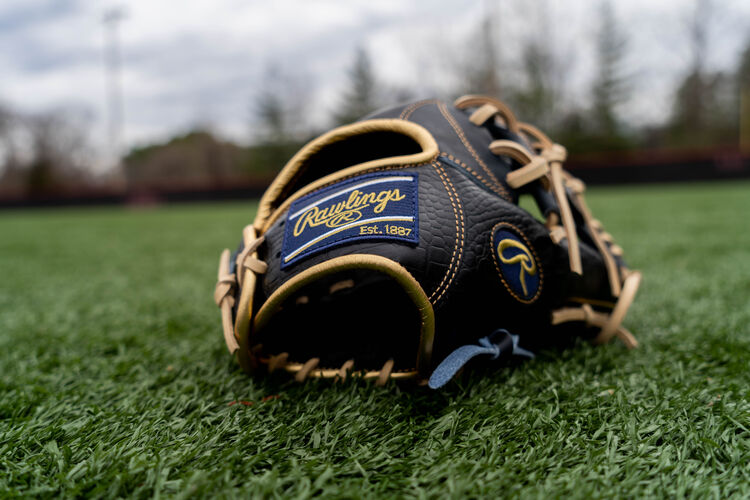 A Rawlings HOH Croc embossed leather glove sitting on the ground with a navy Rawlings patch - SKU: PRONP4-2NCC