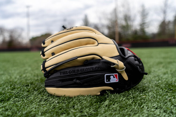 Croc embossed trim on a Heart of the Hide infield glove sitting on a field - SKU: PRO314-7BCC