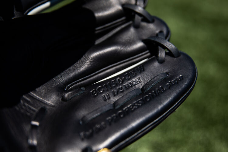 Black pinkie on a Rawlings Encore glove with a field in the background - SKU: EC1150-2BW