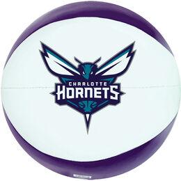 NBA Charlotte Hornets Basketball