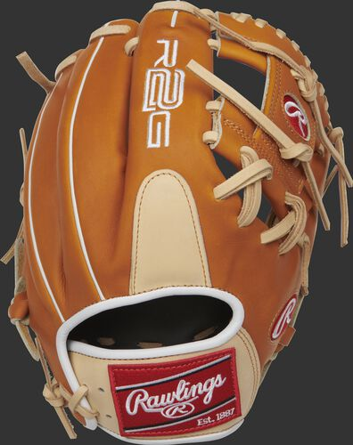 PROR204-2CTW 11.5-inch Heart of the Hide R2G I web glove with a tan back and white binding/welting