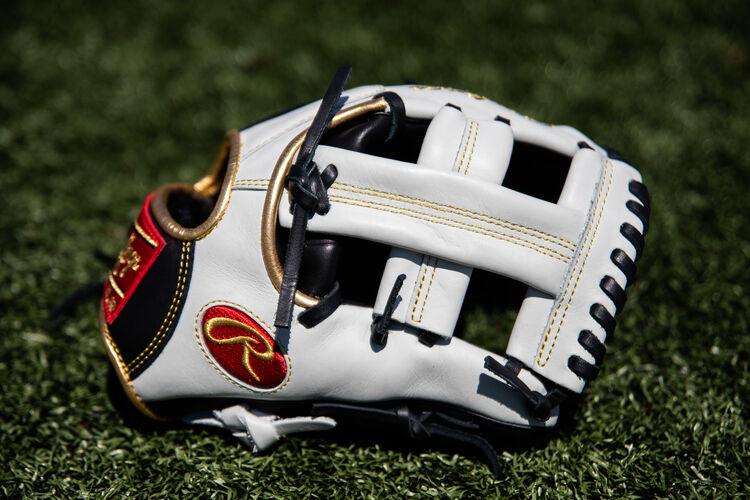 An Encore 11.25-Inch glove sitting on a field - SKU: EC1125-20BW