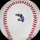 The 2020 Florida Spring Training logo on an Official MLB baseball - SKU: ROMLBSTFL20 image number null