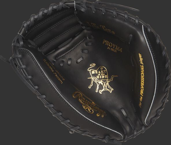 PROYM4 34-inch Heart of the Hide catcher's mitt with a black palm and black laces