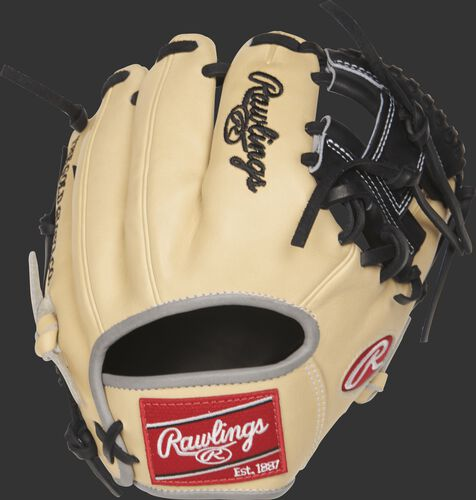 PRO200TR-2C 9.5-inch Heart of the Hide training glove with a camel back