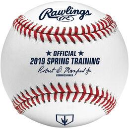 MLB 2019 Arizona Spring Training Baseballs