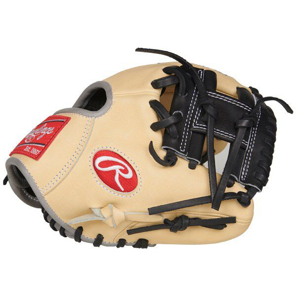 Heart of the Hide 9.5 in Training Glove