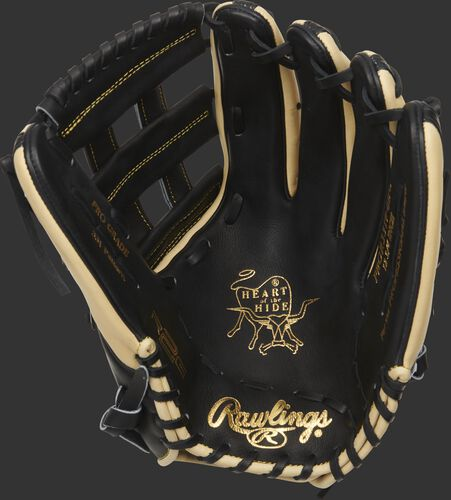 Black palm of a Rawlings HOH R2G glove with a black web and laces - SKU: PROR3319-6BC