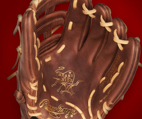 New Softball Gloves