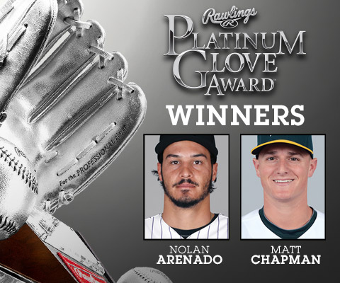Platinum Glove Award