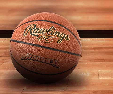 Rawlings Basketballs